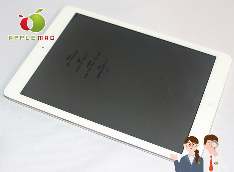 iPad Air 2 アクティベーションロック高価買取専門店