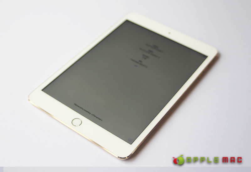 au iPad mini 3 Wi-Fi + Cellular  16GB ゴールド 中古品販売1