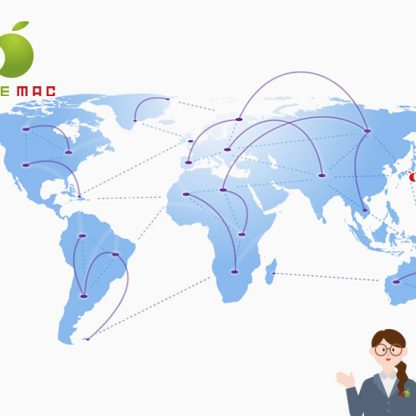 DJI Drawn/iPhone International shipping KOBE