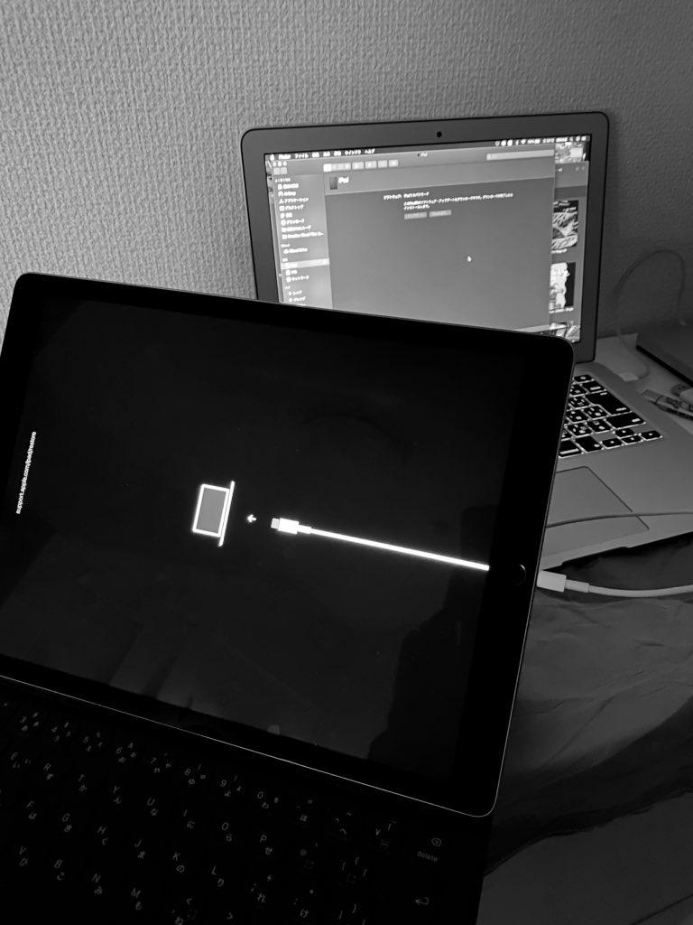 【対象外】iPad 12.9 2nd 意地でも再起動フリーズを自力で直す